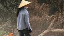 Pomelo | Phuong Thao Tran (Réalisateur)