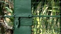 Derrière le portail | Jean Baronnet (Réalisateur)